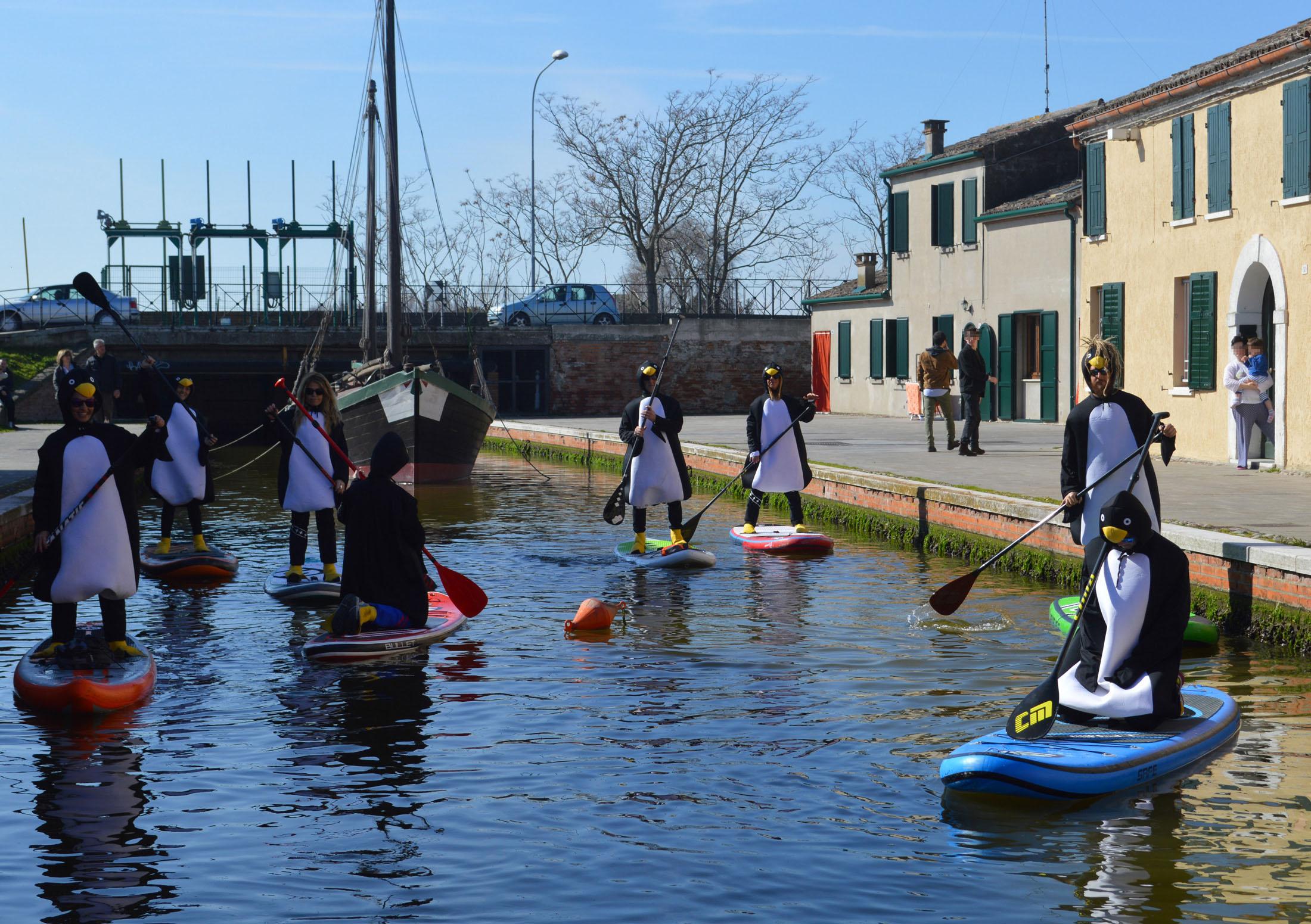 Sup-news-italia-2017-horizon36_comacchio_pinguini-05