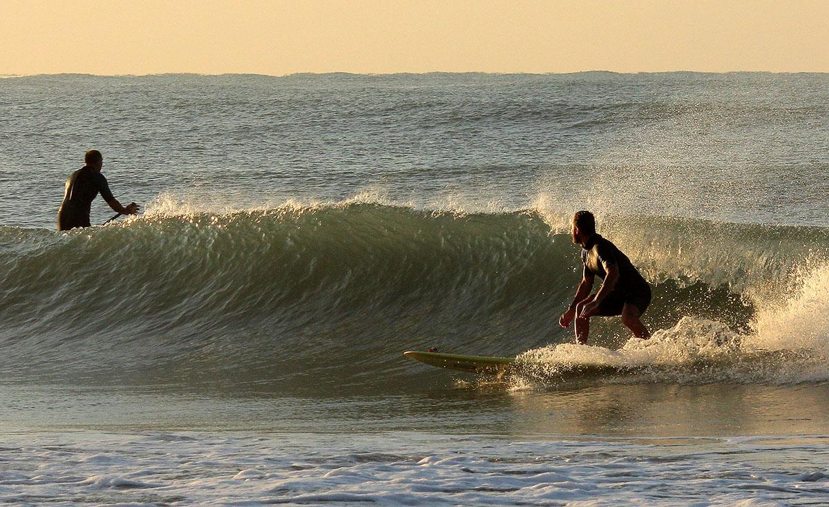Andrea Natural Surf...